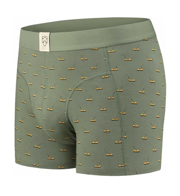 a-dam-boxers-frank-army-dessin