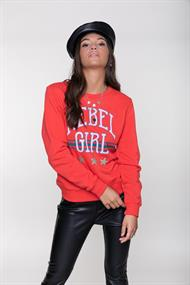 Colourful Rebel Sweatshirts 10031 rebel