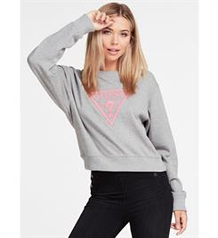 Guess dames Sweatshirts W01q56 k6810 neon fleece Grijs
