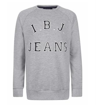 Indian Blue Jeans Fleece truien Ibb27-4559 Grijs melee