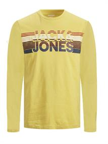 jack & jones kids Lange mouw T-shirts 12179782