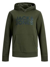 jack & jones kids Sweatshirts 12152841
