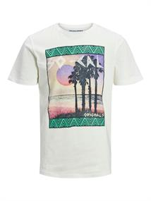 Jack & Jones Korte mouw T-shirts 12173032