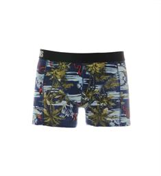 Only and Sons Boxershorts 22012776 onsnunny trunk Blauw