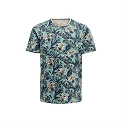 Only and Sons Korte mouw T-shirts 22016215