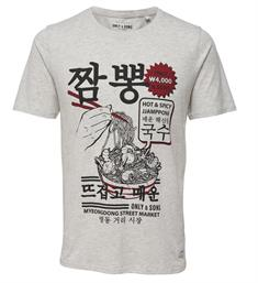 Only and Sons T-shirts 22009242 sylves