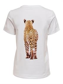 Only Korte mouw T-shirts 15246982