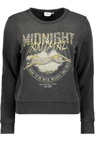 Only Sweatshirts 15228866