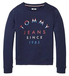 Tommy Jeans Fleece truien Dw0dw04085 Navy