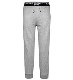 Tommy Jeans Sweatpants Dm0dm05115